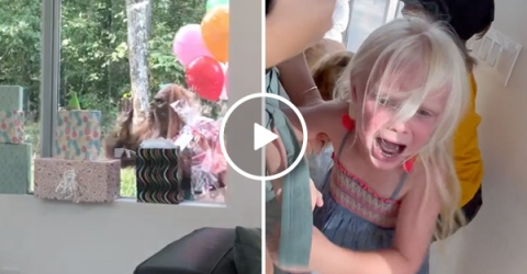 Hiring Bigfoot for your kid's bday... WHAT COULD GO WRONG?