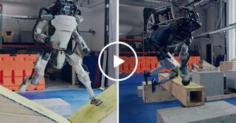 Hey Boston Robotics? Please stop training Terminators
